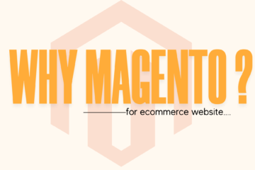 eCommerce Website Development Services in Delhi